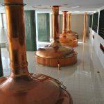 Pilsen: el origen de la cerveza