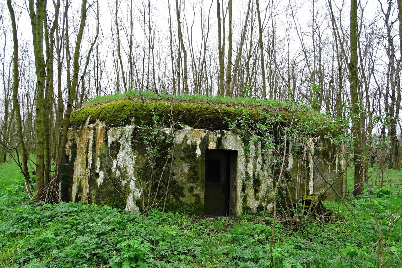 bunker checo