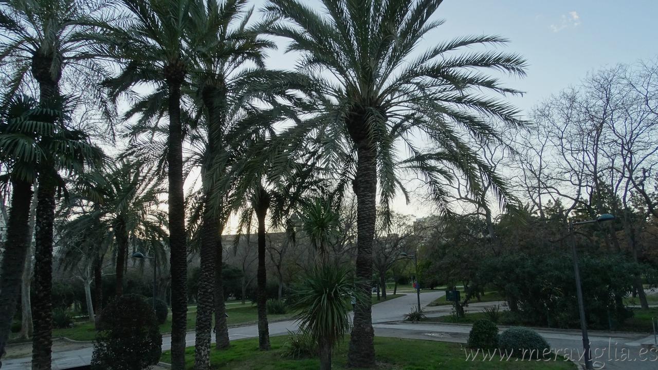 Los mejores parques y jardines de valencia 1 meraviglia - Jardin del turia valencia ...