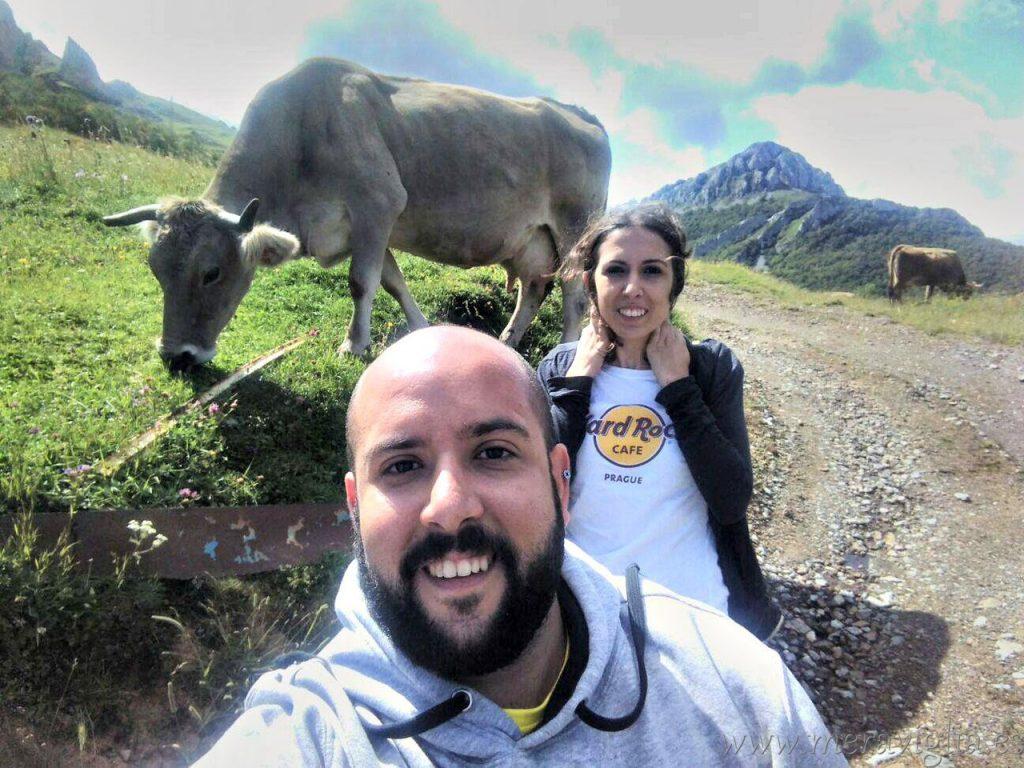 Selfie con vaca