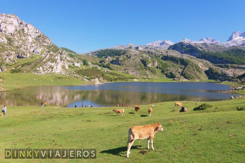 DinkyViajeros - Lagos de Covadonga (Asturias)