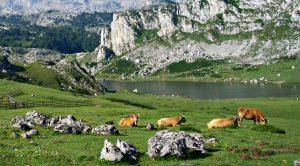 15 sitios del interior de España para visitar en verano