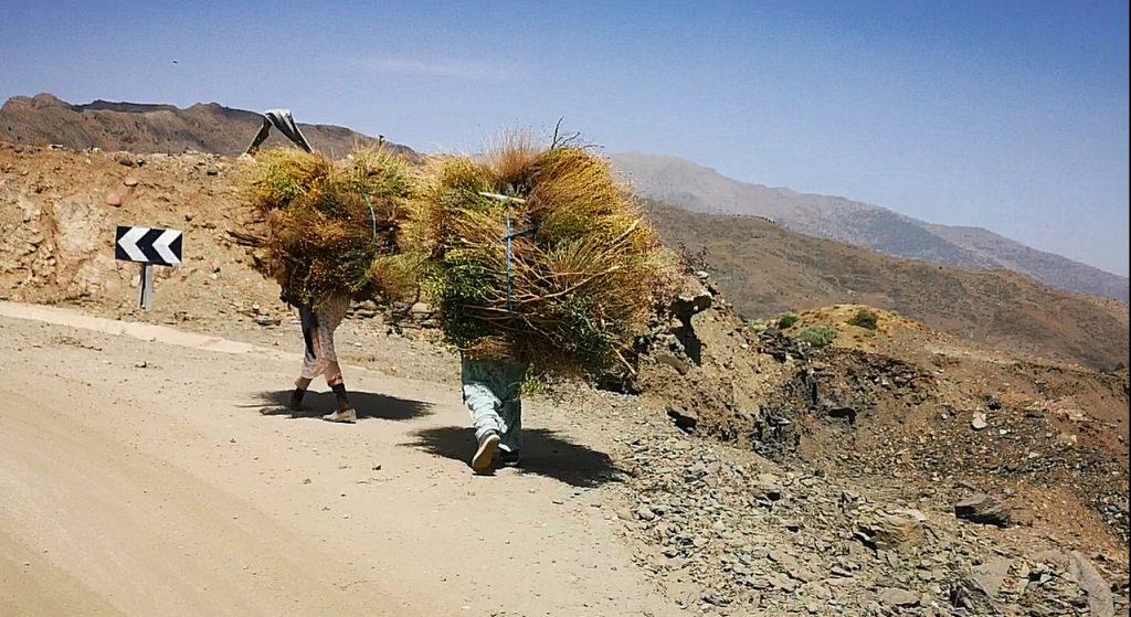 Mujeres trabajo en Marruecos