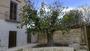 Edificios históricos de Valencia: la Alqueria dels Moros